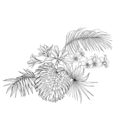 Adesivo A composition of tropical plants, palm leaves