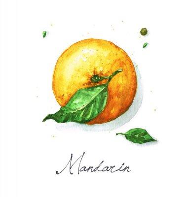 Adesivo Acquerello cibo Painting - mandarino o arancio