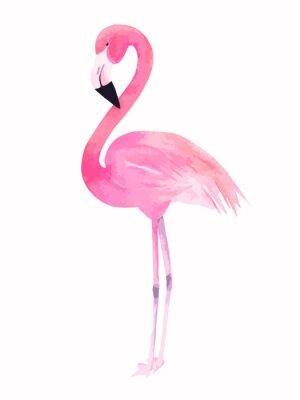 Adesivo Acquerello fenicottero rosa. illustrazione di vettore