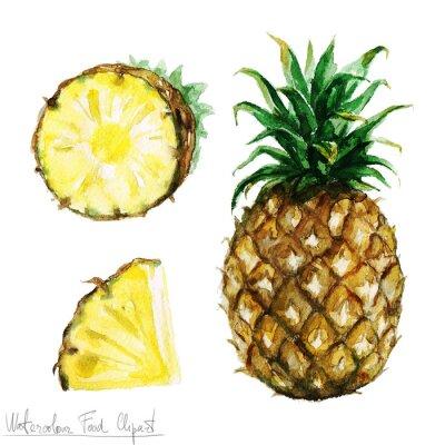 Adesivo Acquerello Food clipart - Ananas