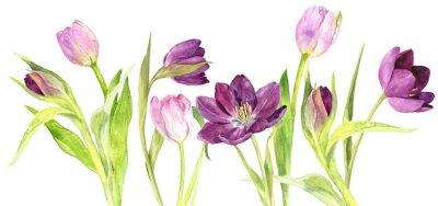 Adesivo Acquerello viola e rosa tulipani