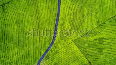 Adesivo Aerial view of empty highway on the tea plantation. Shot at Subang highlands, Indonesia
