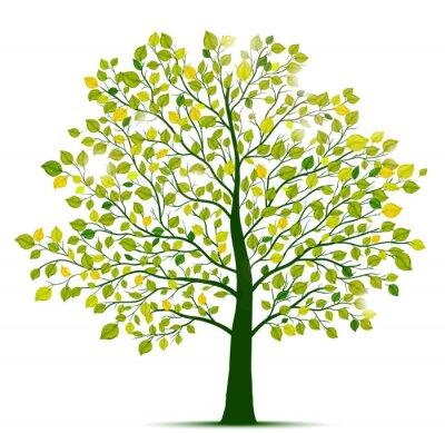 Adesivo albero verde isolato