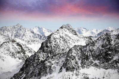 Adesivo Alpi