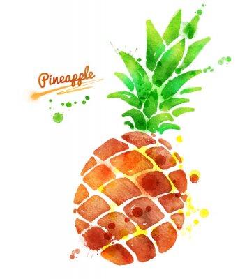 Adesivo Ananas con spruzzi di vernice.
