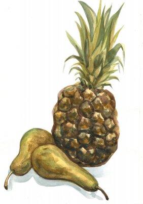 Adesivo Ananas e pera su uno sfondo bianco. pittura ad acquerello