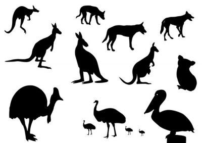 Adesivo animali australiani silhouette