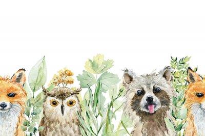 Adesivo Animals watercolor illustration