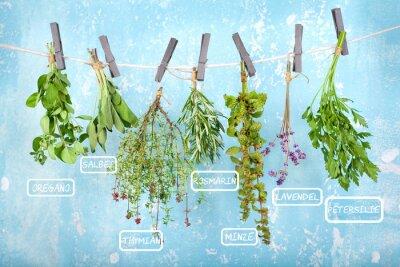 Adesivo Appendere ad asciugare le erbe