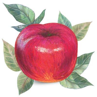 Adesivo Apple su bianco con percorso di clipping