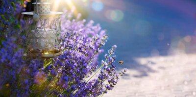 Adesivo arte estate o in primavera bellissimo giardino con fiori di lavanda
