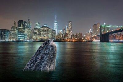 Adesivo balena nel fiume manhattan di notte