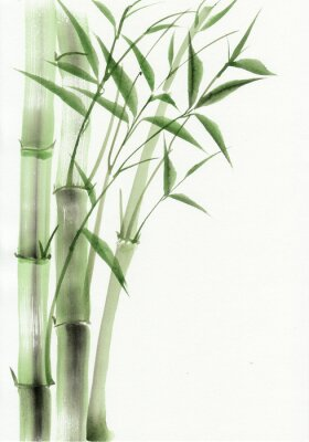 Adesivo Bambù pittura ad acquerello originale. stile asiatico.