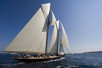 Adesivo Barca a vela