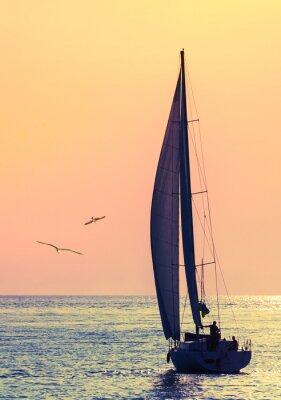 Adesivo barca a vela orizzonte e due gabbiano