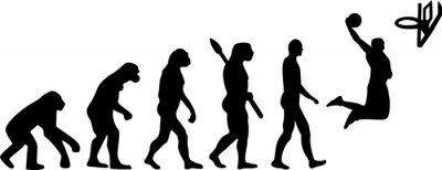 Adesivo Basketball Evolution