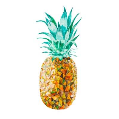Adesivo Bassa ananas acquerello poli