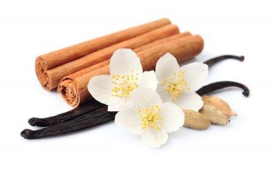 Adesivo bastoncini di vaniglia