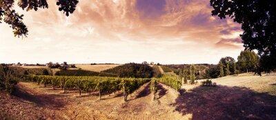 Adesivo bel tramonto sui vigneti in Toscana