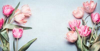 Adesivo Bel tulipani in colore pastello rosa su sfondo blu chiaro, vista dall'alto, cornice, bordo. Biglietto di auguri bello con tulipani per la madre giorno, matrimonio o evento felice