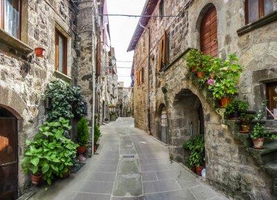 Adesivo Bella vista di vecchie case tradizionali e vicolo idilliaca nel centro storico di Vitorchiano, Viterbo, Lazio, Italia