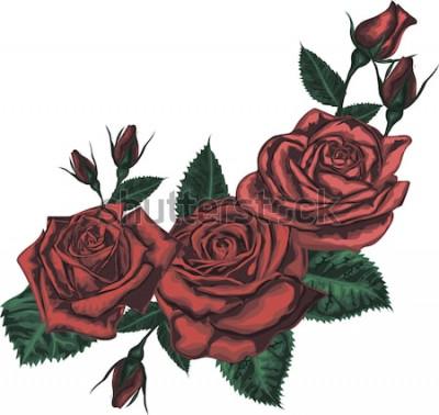Adesivo Bellissimo bouquet con rose rosse. Arte realistica di vettore - rose rosse su fondo bianco. - Elemento di design per biglietto di auguri