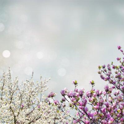 Adesivo Blooming magnolia