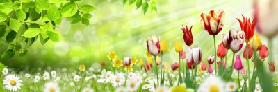 Adesivo Blumen 1030