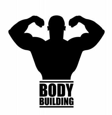 Adesivo body building