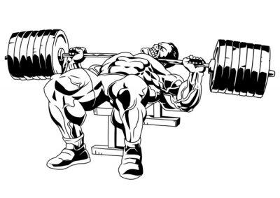 Adesivo bodybuilder nella formazione