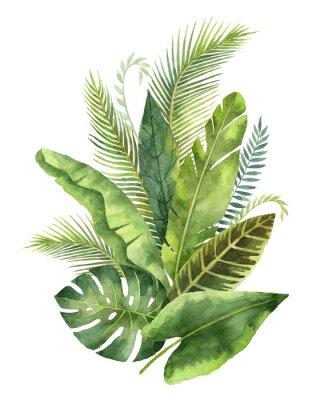 Adesivo Bouquet di acquerello foglie tropicali e rami isolati su sfondo bianco.