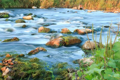 Adesivo Bruciando fiume