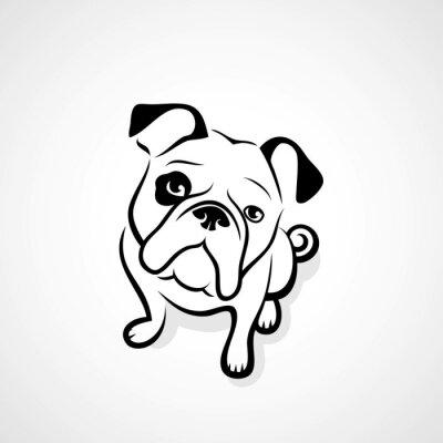 Adesivo bulldog