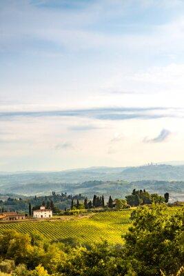 Adesivo Campi in Toscana