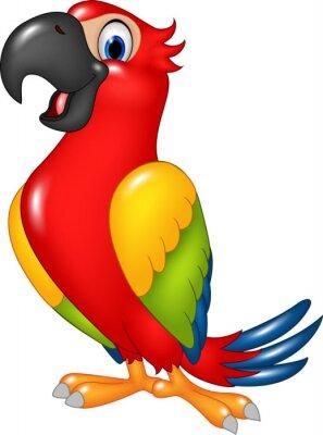 Adesivo Cartoon divertente pappagallo isolato su sfondo bianco