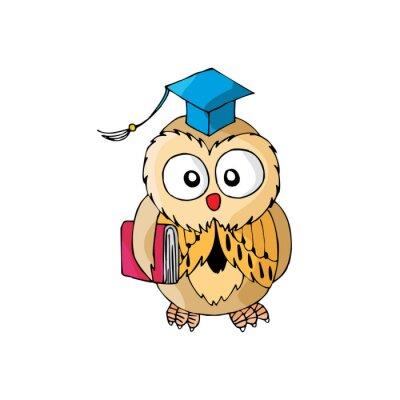 Adesivo Cartoon Owl sua intelligente