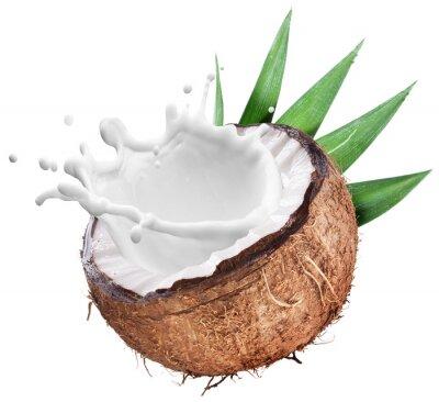 Adesivo Coconut with milk splash inside.