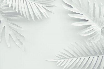 Adesivo Collection of tropical leaves,foliage plant in white color with space background.Abstract leaf decoration design.Exotic nature art