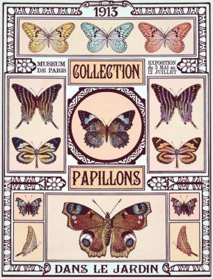 Adesivo Collezione di farfalle