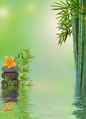 Adesivo Composizione aquatique massaggio rilassante zen