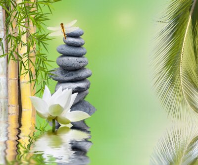 Adesivo Composizione Bambou palmier galets aquatique zen