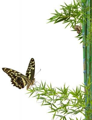 Adesivo concetto di natura distensione zen
