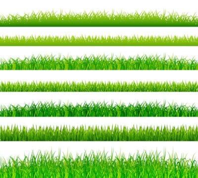 Adesivo confini erba Green impostare