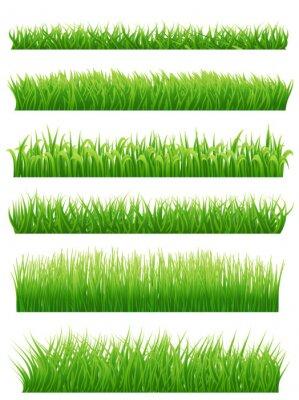 Adesivo confini erba Green impostare su bianco. illustrazione di vettore