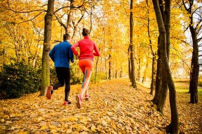 Adesivo Coppia di jogging in autunno la natura