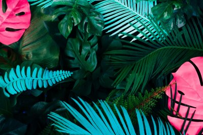 Adesivo Creative fluorescent color layout made of tropical leaves. Flat lay neon colors. Nature concept.