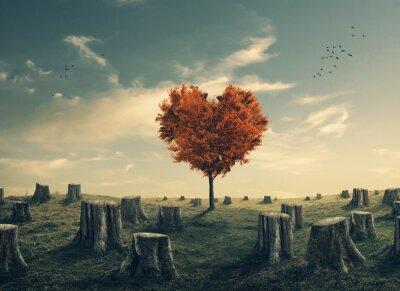 Adesivo Cuore a forma di albero nella foresta eliminato