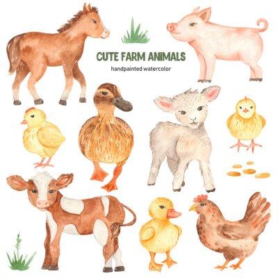 Adesivo Cute farm animals horse, pig, lamb, calf, duck, duckling, watercolor chick