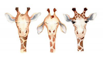 Adesivo Cute giraffe cartoon watercolor illustration animal set