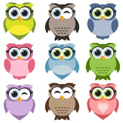 Adesivo Cute owls set